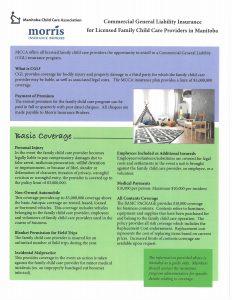 Basic Liability Insurance